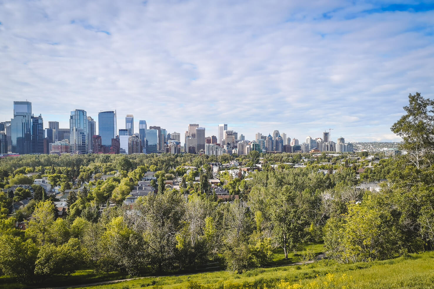 Things to do in Calgary in summer-10