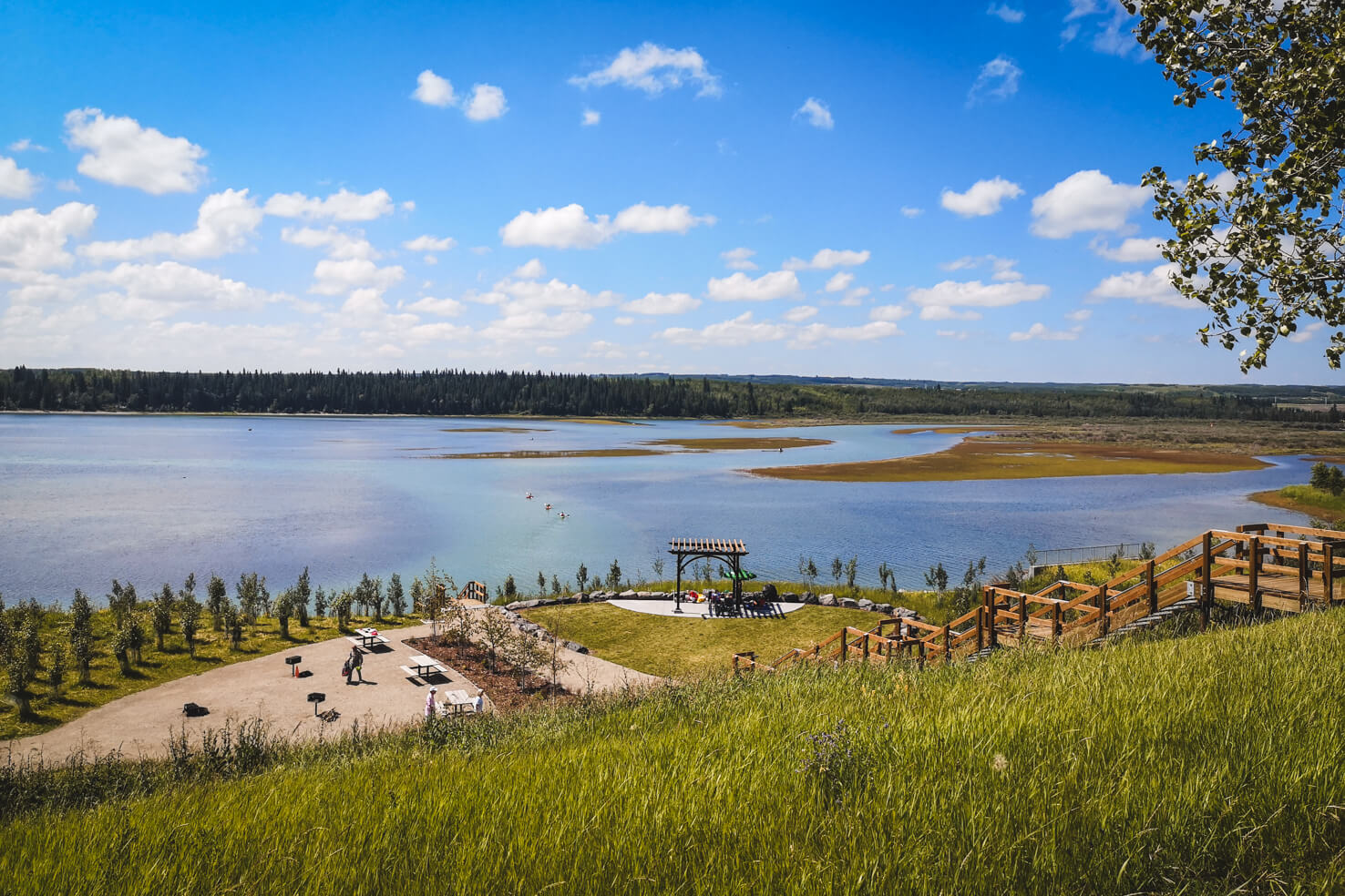Things to do in Calgary in summer - Have barbeque in North Glenmore Park