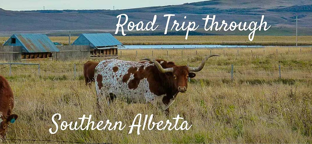 Road Trip through Southern Alberta, Canada