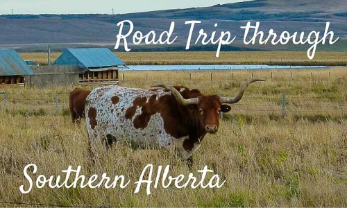 Road trip through Southern Alberta