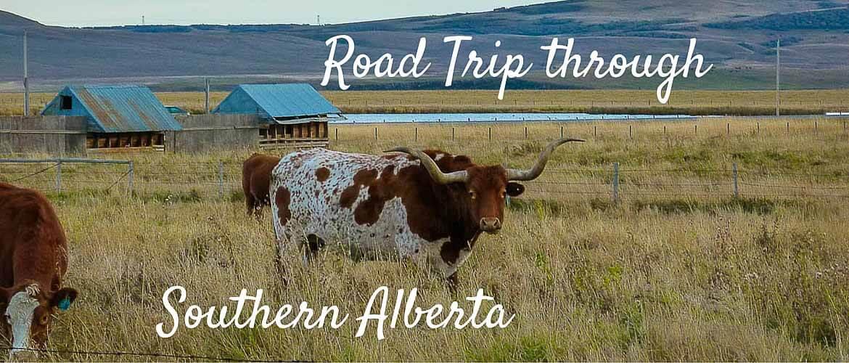 Road trip through Southern Alberta
