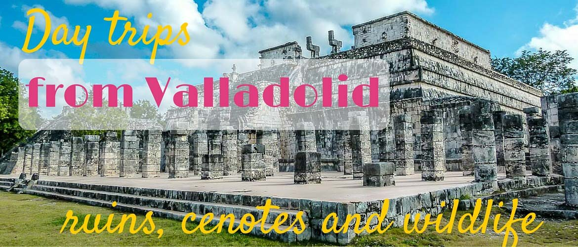 Day trips from Valladolid – ruins, cenotes and wildlife
