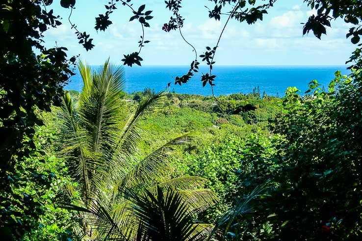 Road to Hana most scenic hawaiian drive on Maui