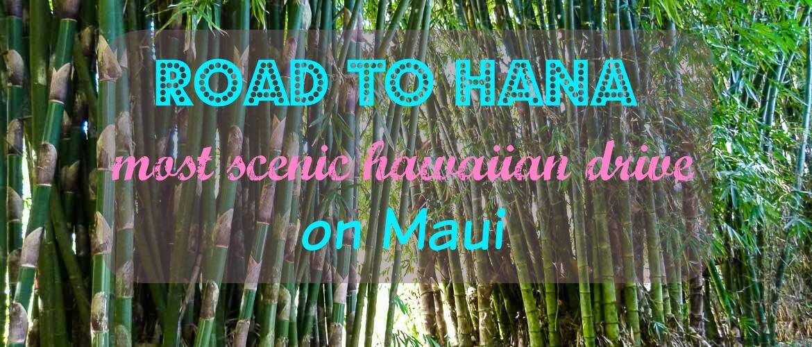 Guide to Road to Hana stops