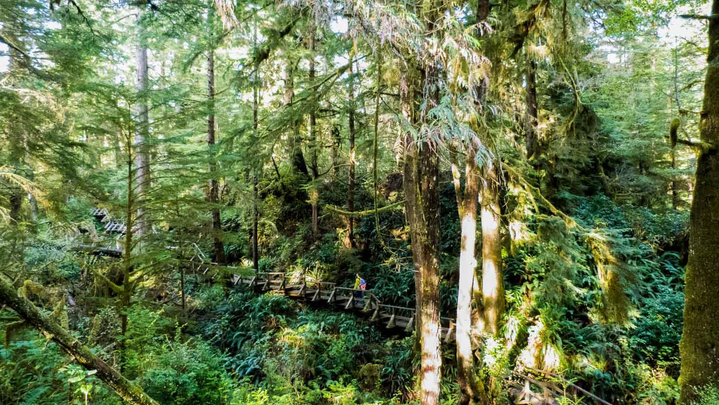 Spirit of Vancouver Island--18