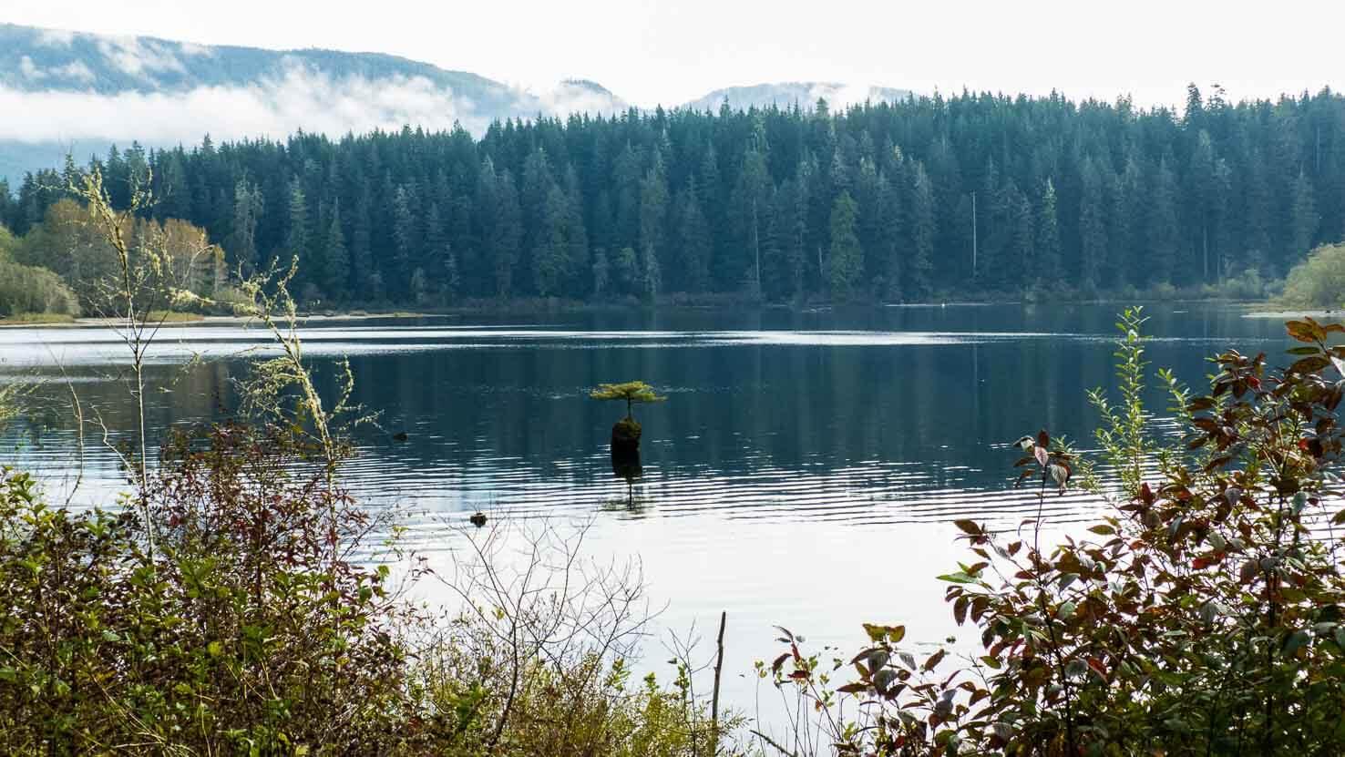 Spirit of Vancouver Island--30