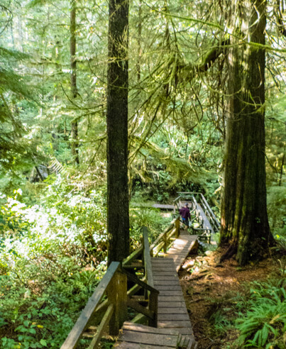 32 outdoor things to do on Vancouver Island-hiking