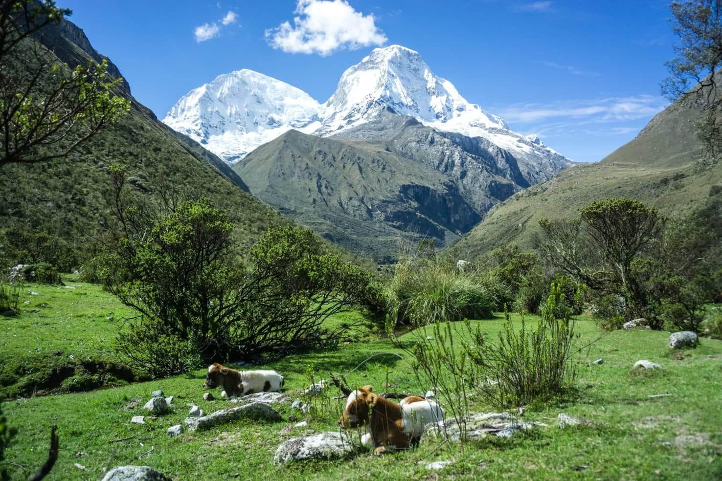 Hiking Laguna 69 Peru, the bluest lake in the Andes