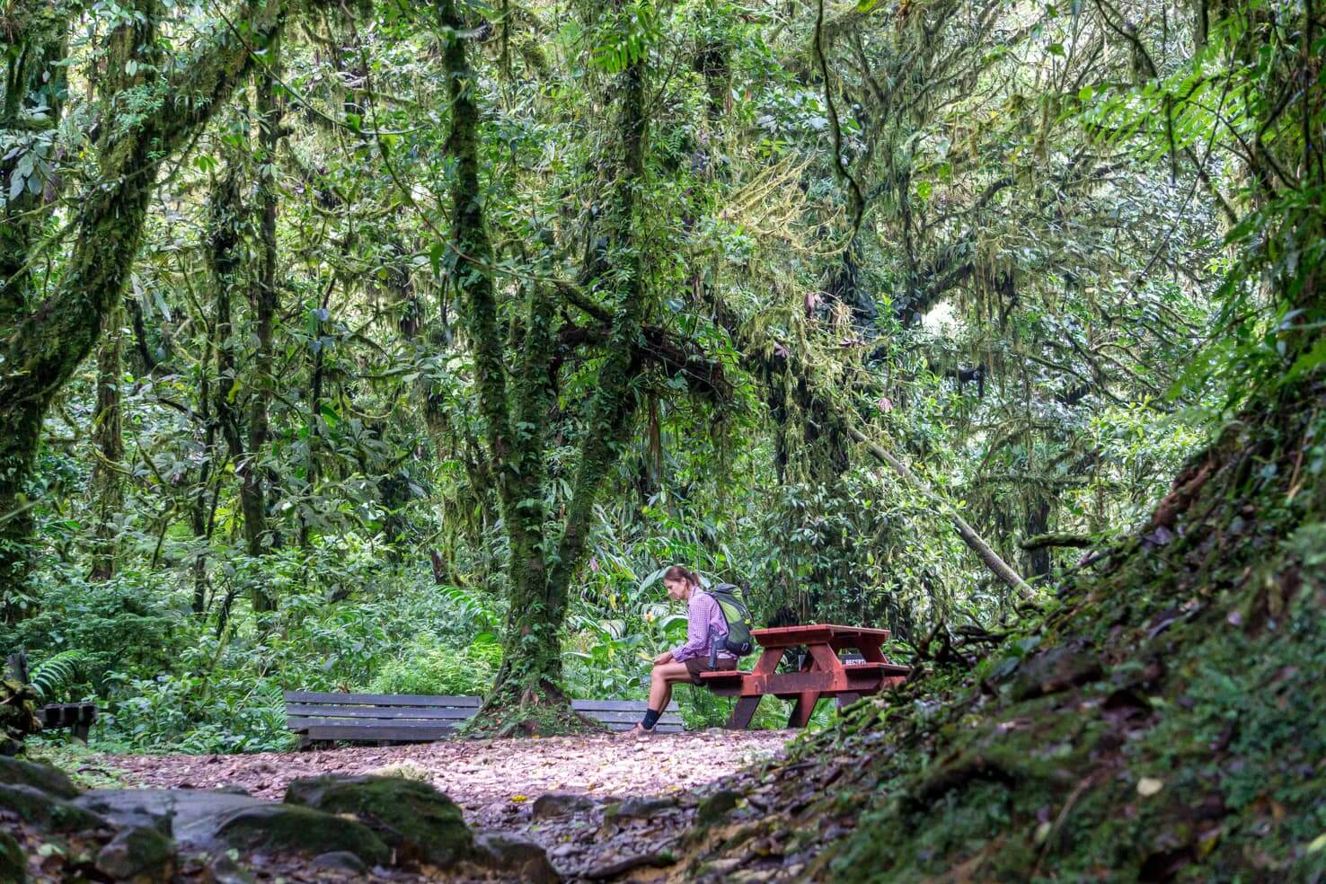 10 days in Costa Rica - Monteverde Cloud Forest Reserve