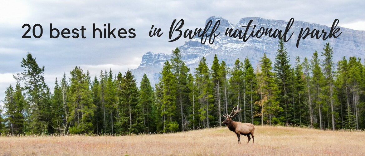 Banff Hikes: 20 Best hikes in Banff National Park, Canada