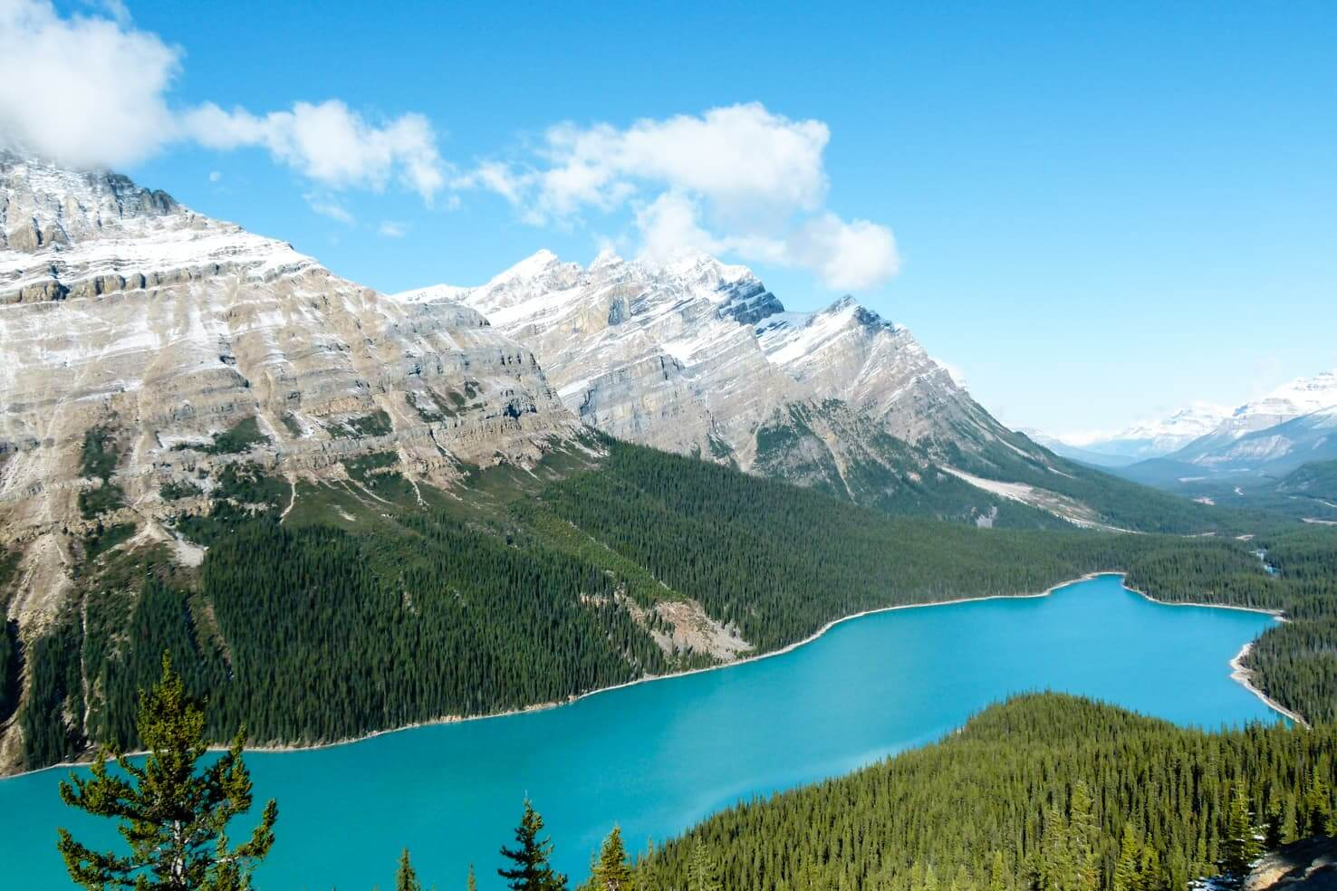 100 best things to do in Banff National Park, Canada - Visit the insanely blue Peyto Lake