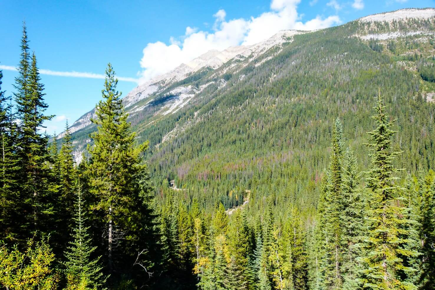 100 best things to do in Banff National Park, Canada - Watch trains disappearing in the hill