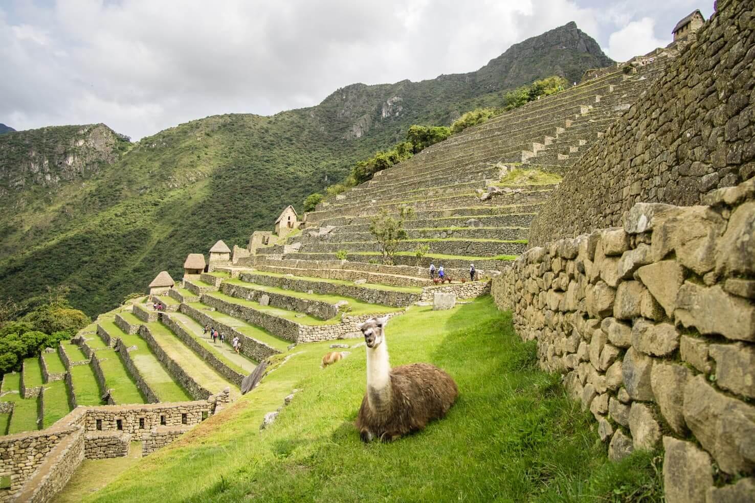 Budget Machu Picchu Travel Blog