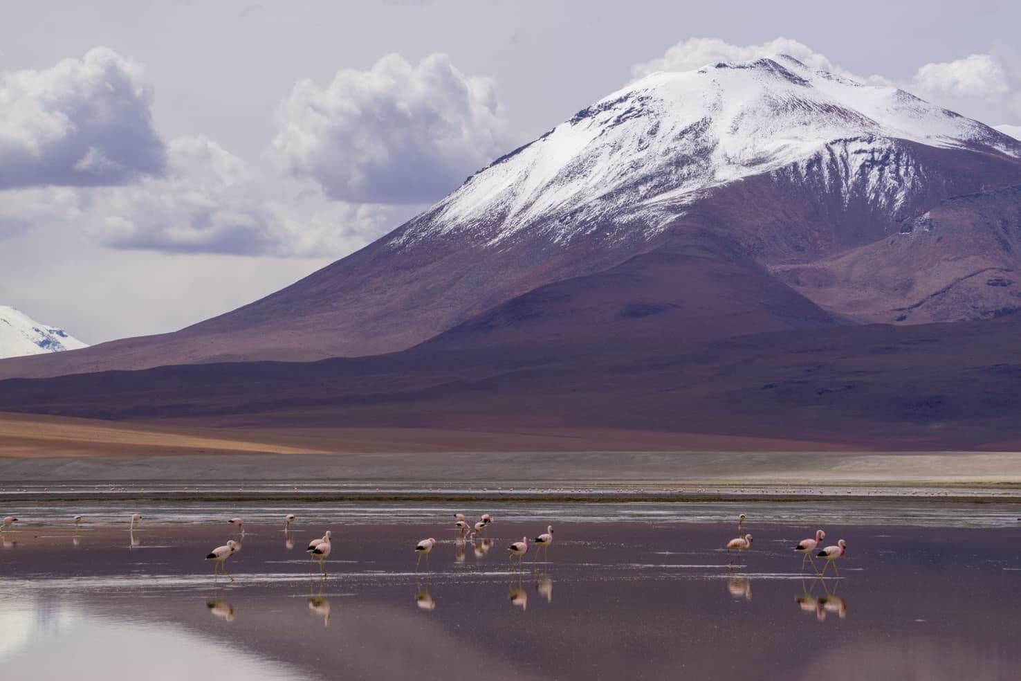 Salt Flats in Bolivia - a complete guide to Salar de Uyuni tour