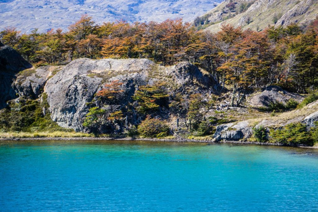 50 insane pictures of Chile to inspire your travels - Patagonia National Park along Carretera Austral, Patagonia, Chile