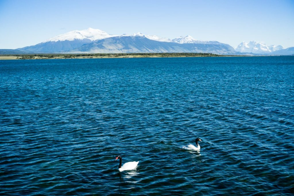 50 insane pictures of Chile to inspire your travels - Puerto Natales near Torres del Paine National Park, Patagonia, Chile