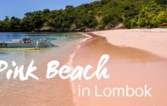 Pink Beach trip in Lombok