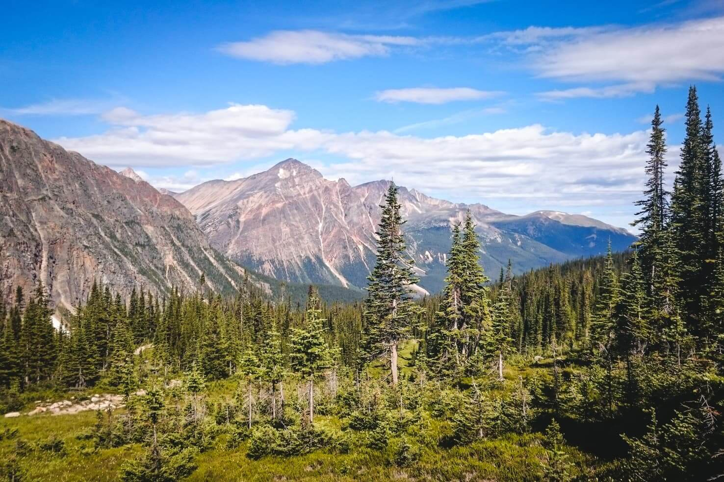 Hiking in Jasper National Park - Edith Cavell Meadows