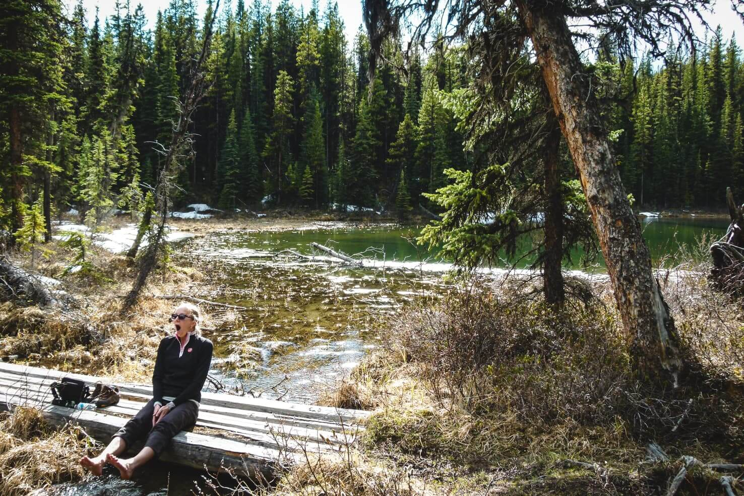 Hiking in Jasper National Park - Moose Lake Loop