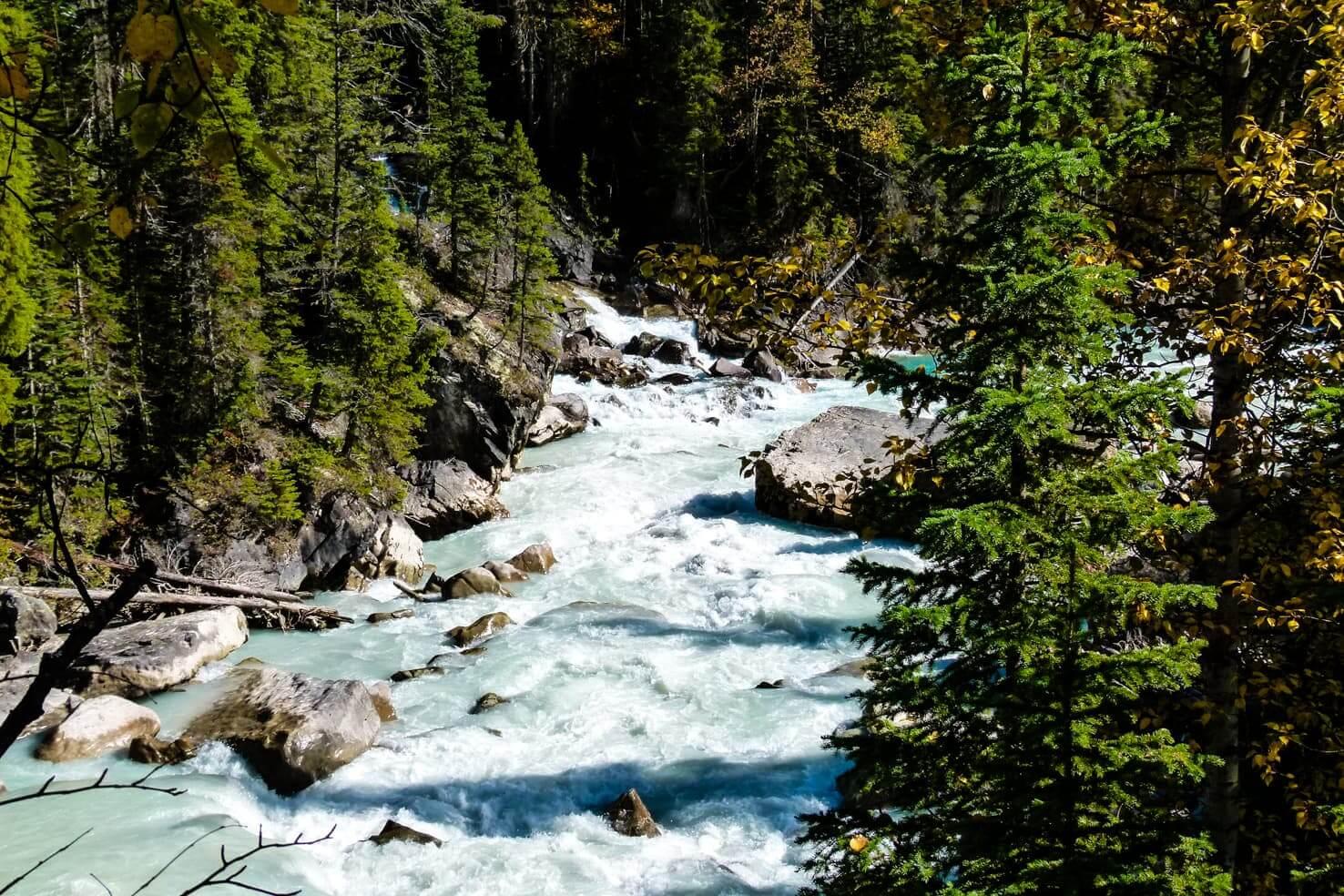 Adventure travel guide to Yoho National Park - confluence of Yoho River and Kicking Horse River