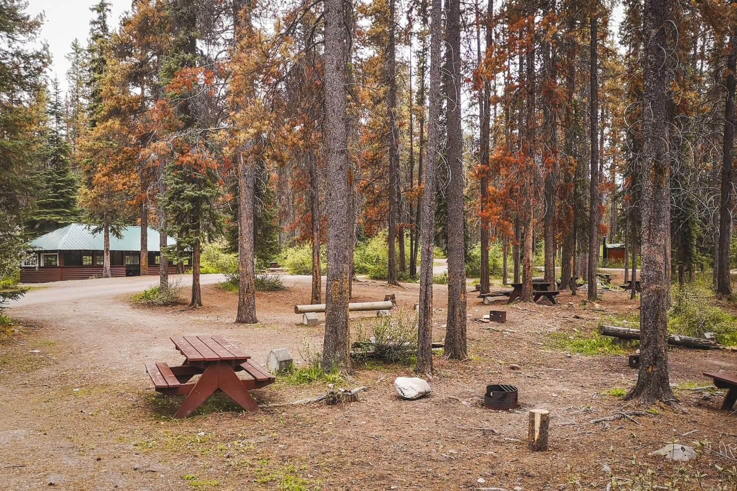 Camping in Jasper National Park - Honeymoon Lake Campground