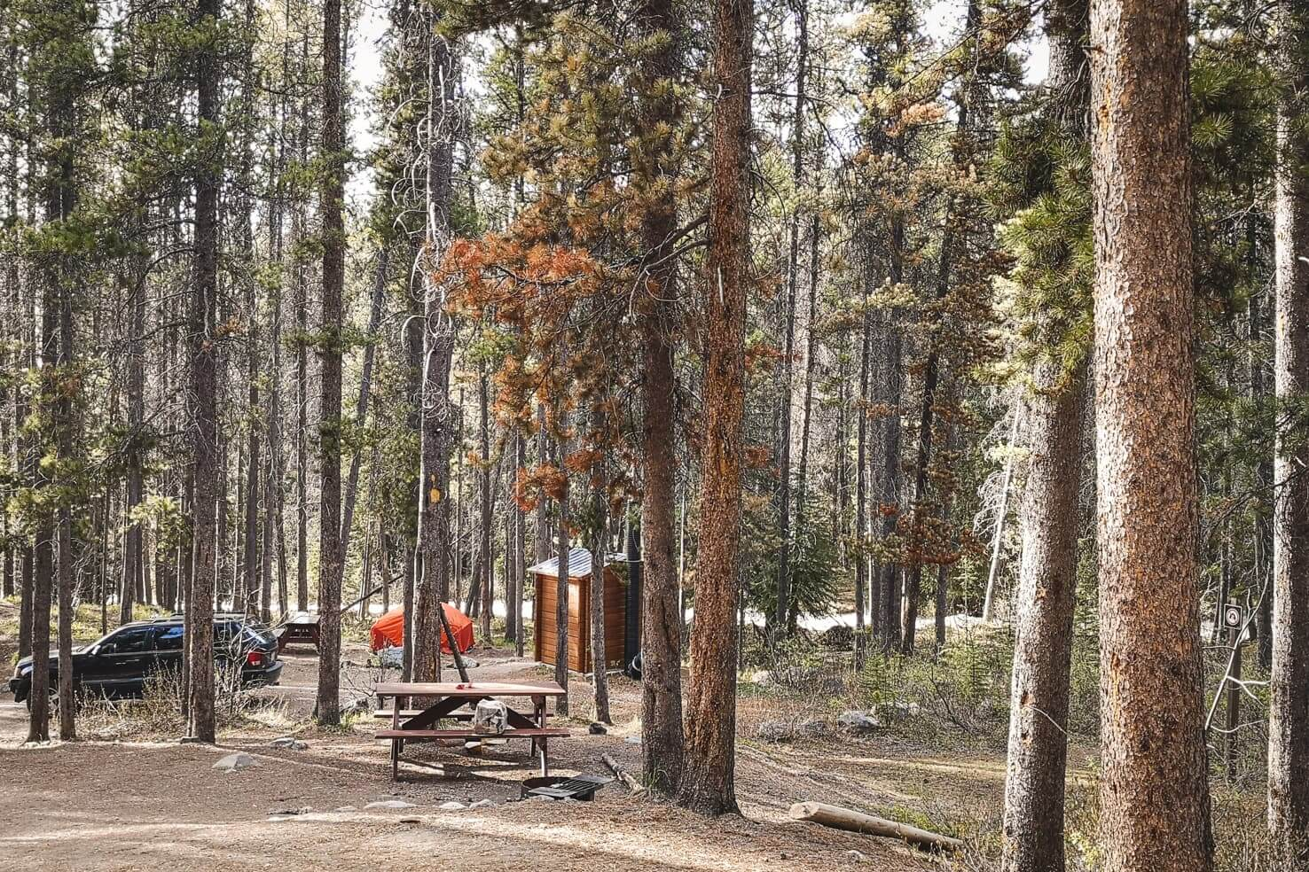 Camping in Jasper National Park - Jonas Creek Campground