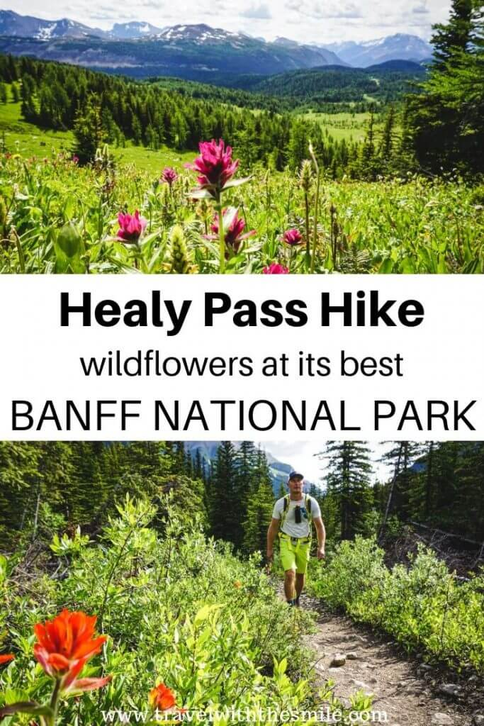 Healy Pass Hike with Egypt Lake, Banff National Park