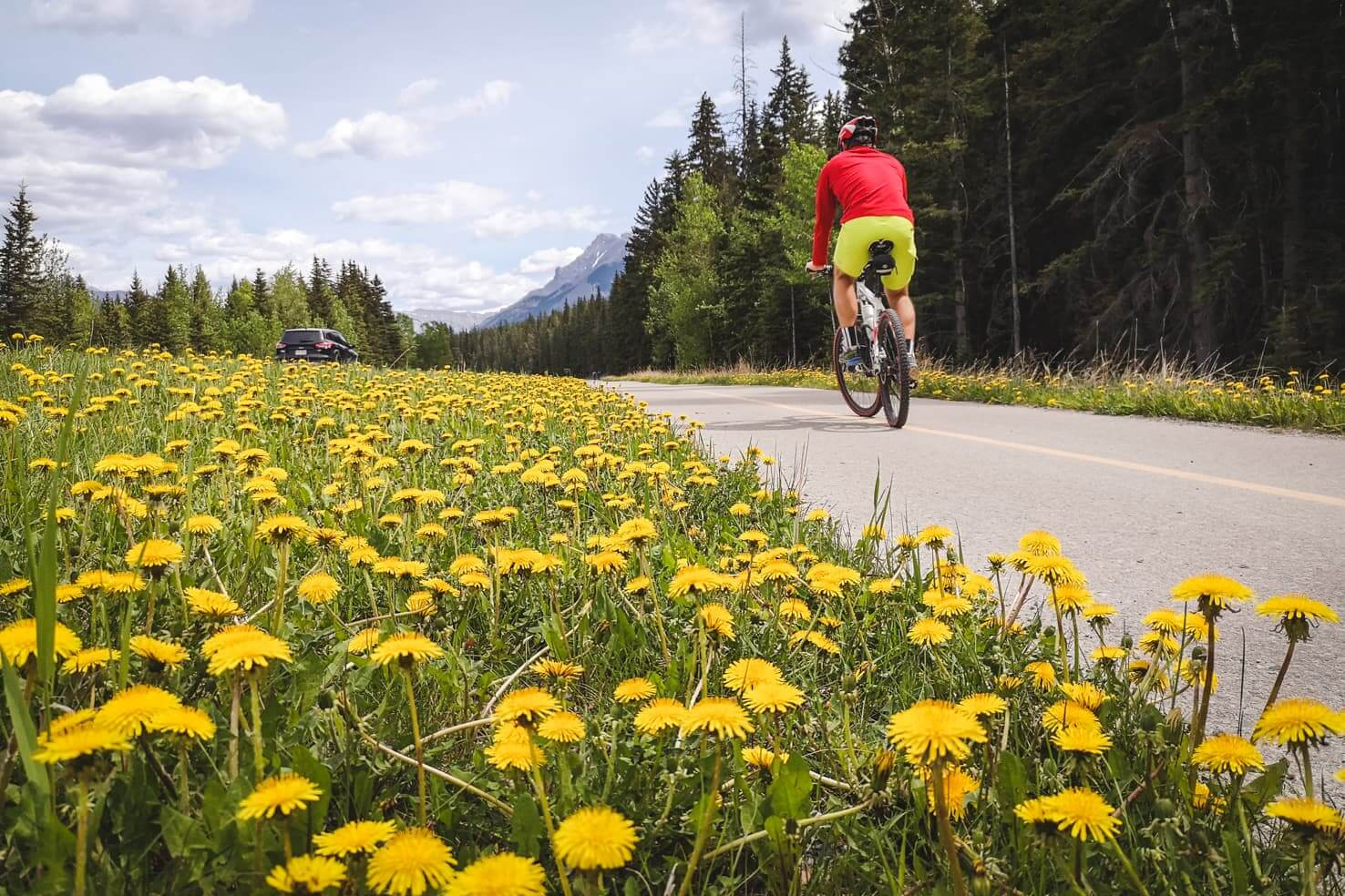 Legacy trail, biking from Banff to Canmore with an adventurous twist