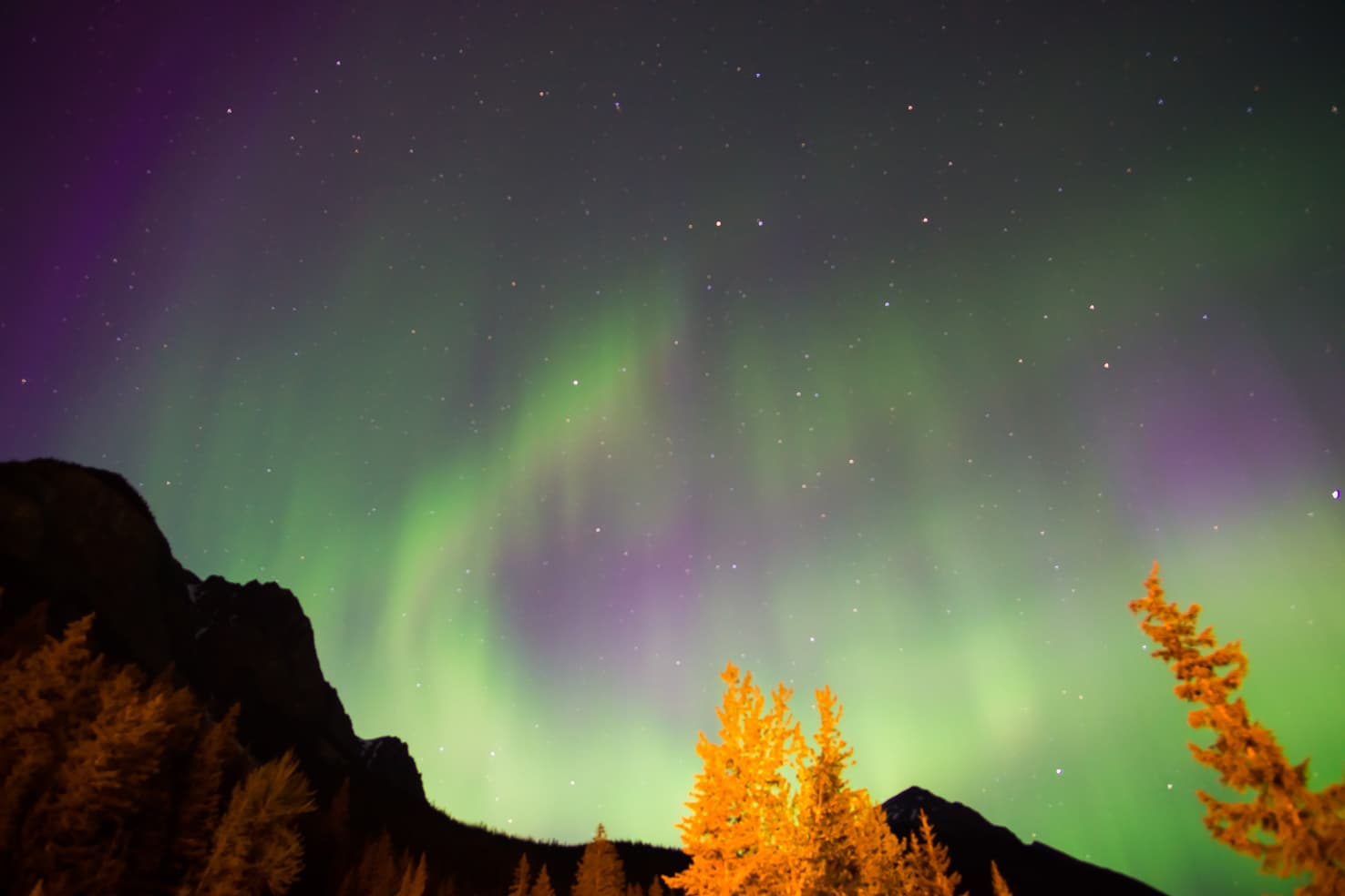 Things to do in Jasper National Park - 13 Watch Northern Lights