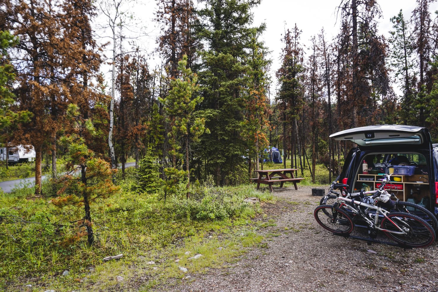 Things to do in Jasper National Park - 28 Camp under the stars