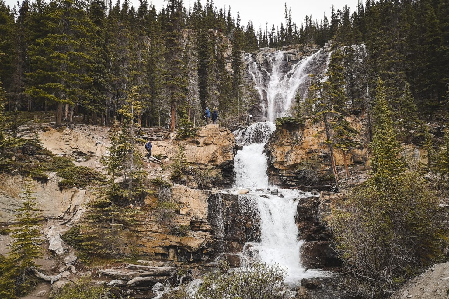 Things to do in Jasper National Park - 47 Walk up the Tangle Creek Falls