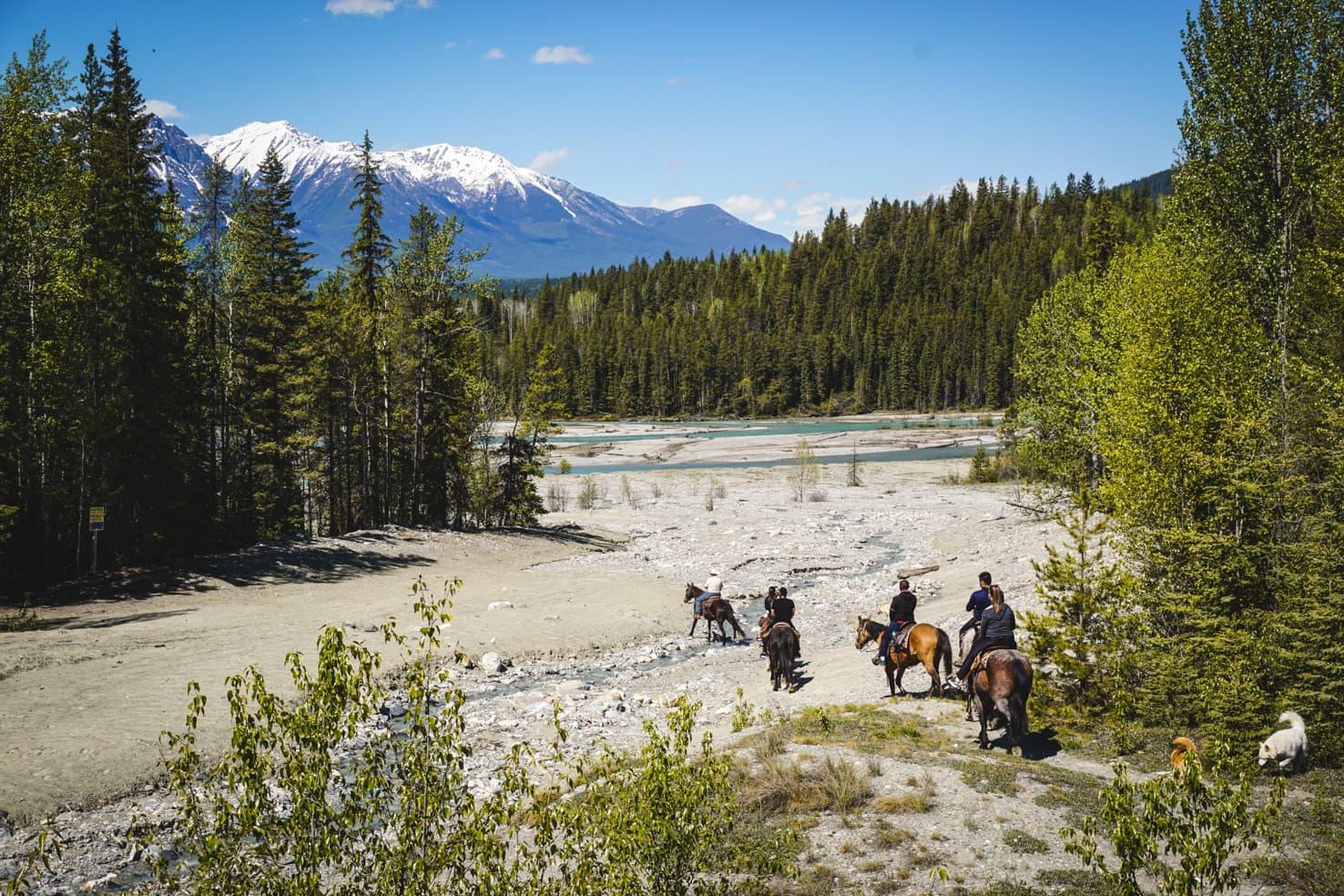 Things to do in Jasper National Park - 49 Go horseback riding