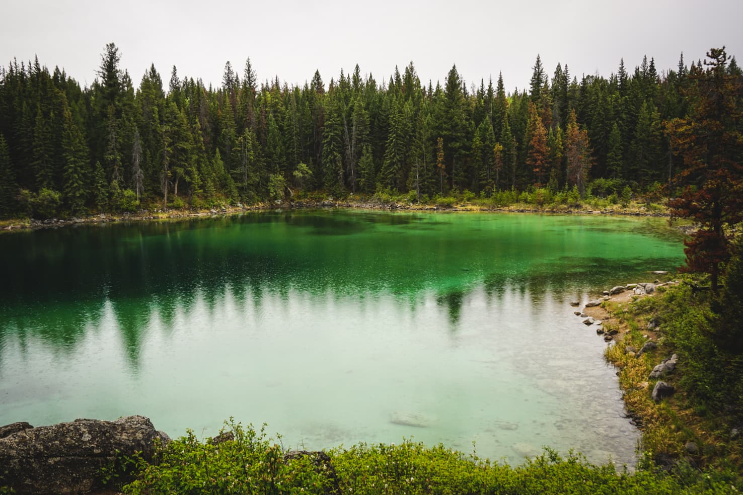 Valley of the Five Lakes, Jasper National Park
