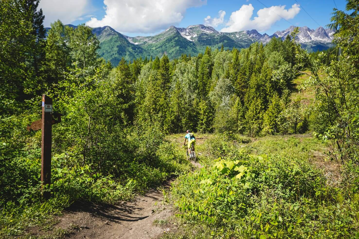 Things to do in Fernie, BC - 13 Mountain bike at Mount Fernie area-2