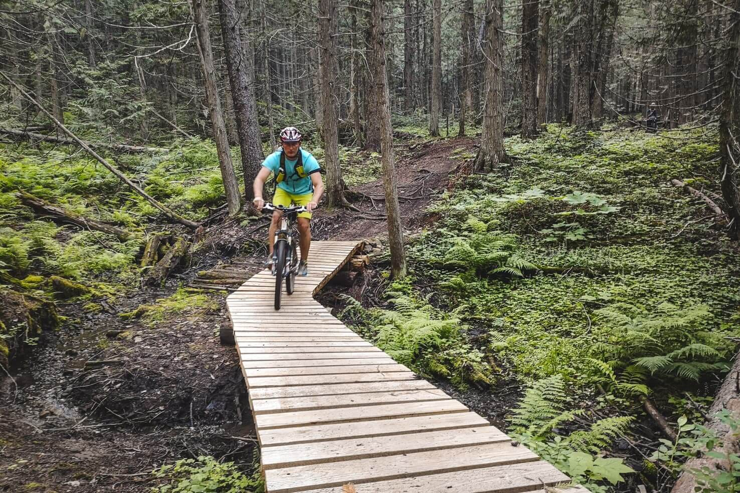 Things to do in Fernie, BC - 7 Downhill bike the iconic Lazy Lizard Trail