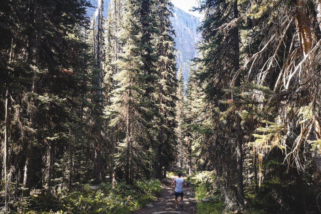 Boom Lake, Banff National Park in summer
