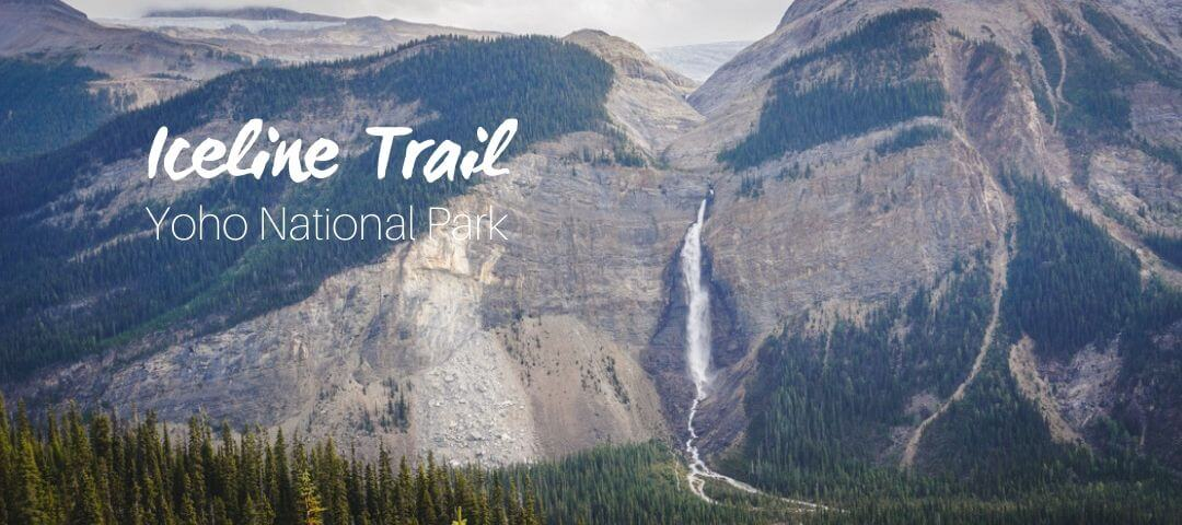 Iceline Trail, a dreamy hike in Yoho National Park