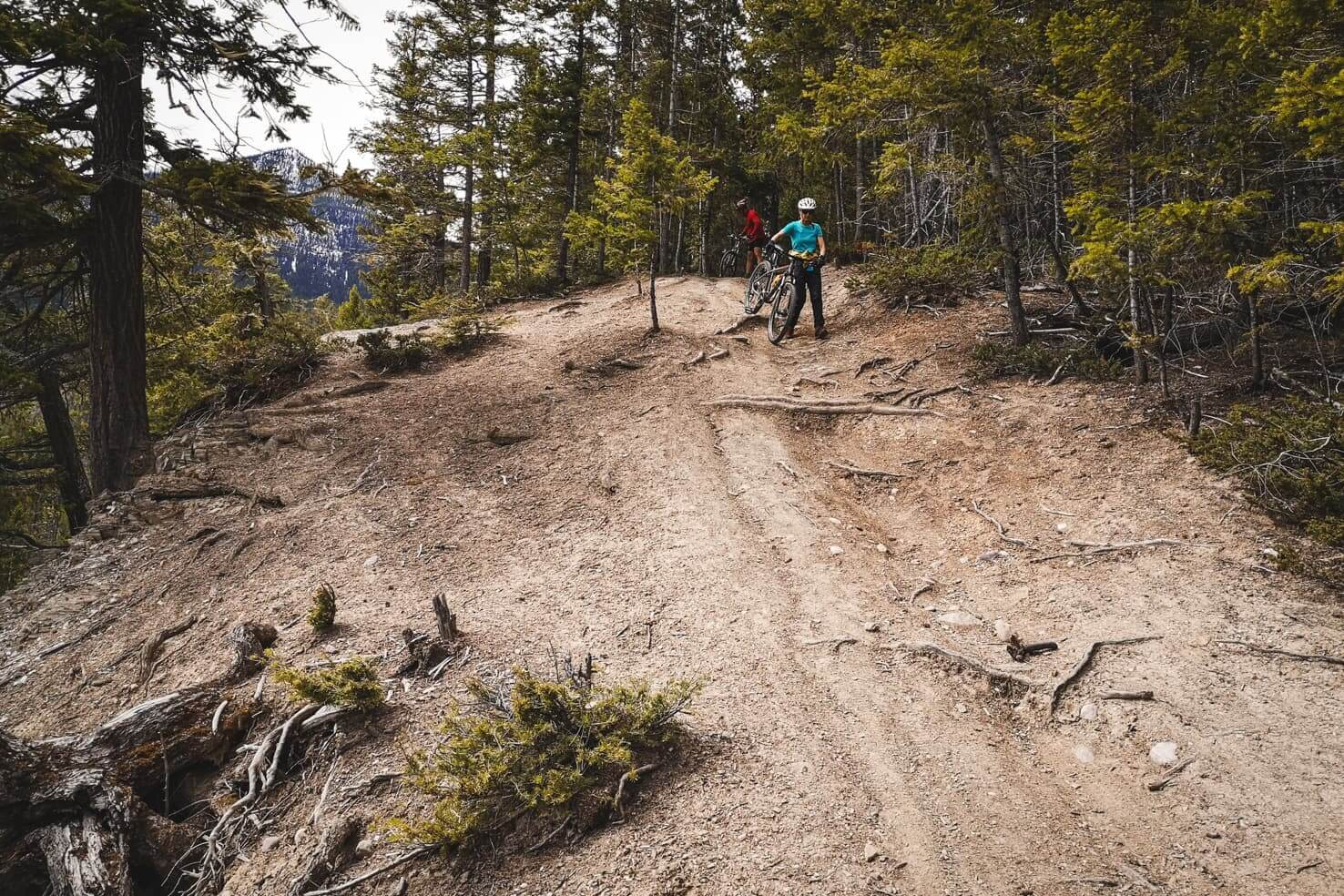 Things to do in Golden, British Columbia