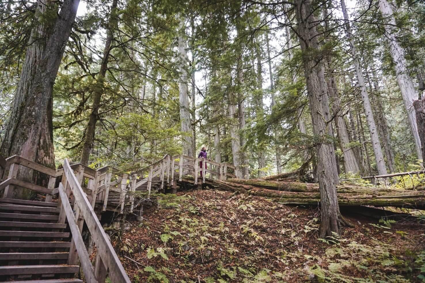 Things to do in Revelstoke, British Columbia
