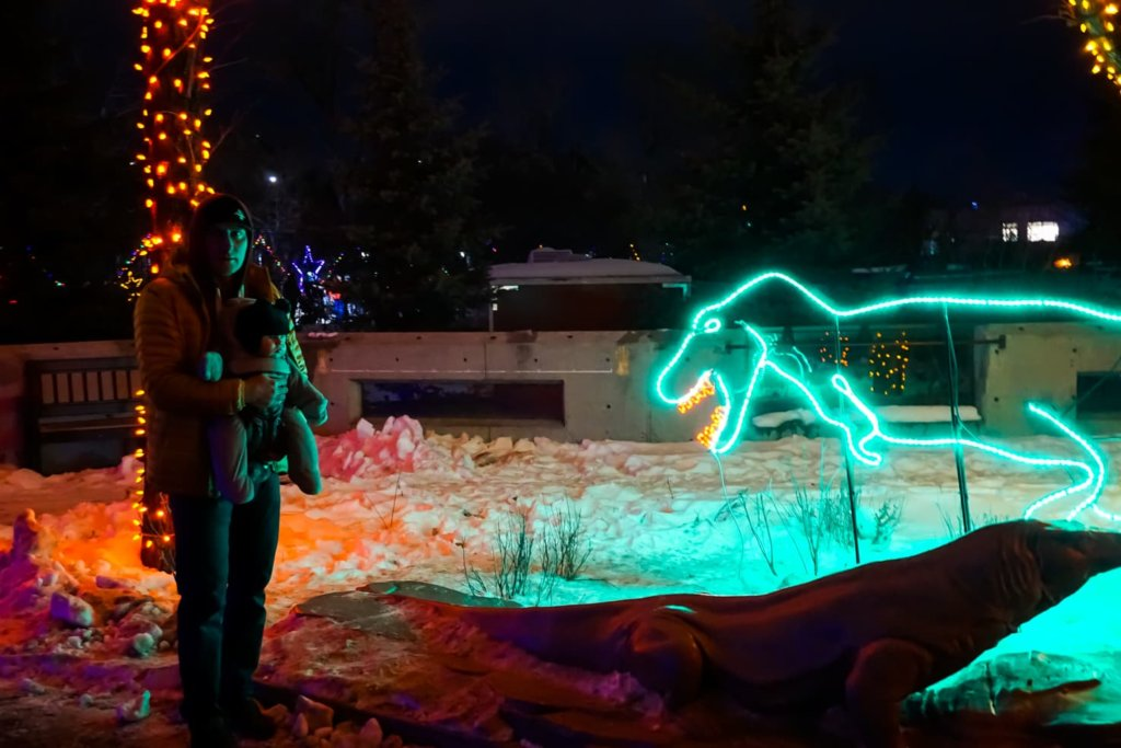 Zoolights in Calgary