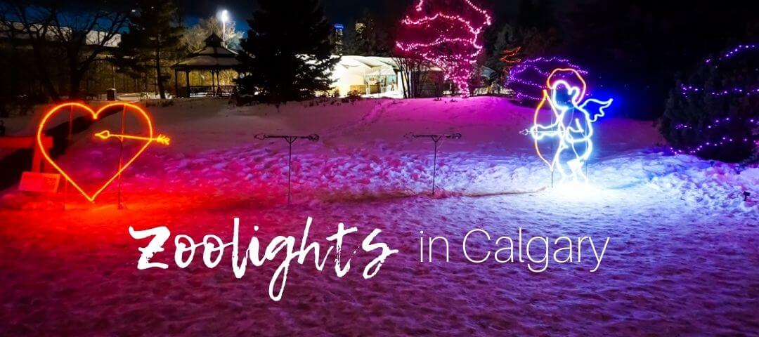 Zoolights in Calgary: 18 Best Displays and Tips for Visiting