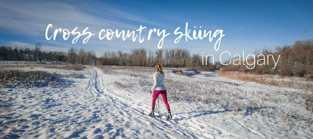 Cross country skiing in Calgary