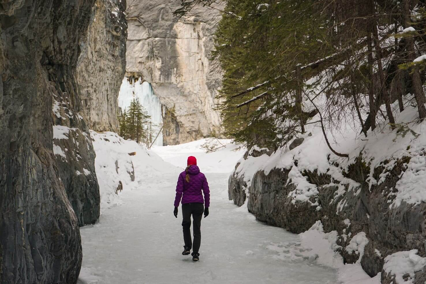 Grotto Canyon Ice Walk in Canmore